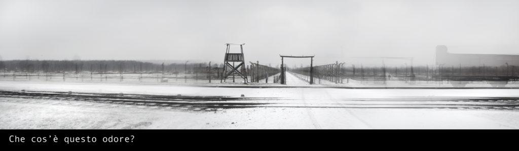 Echi da Auschwitz